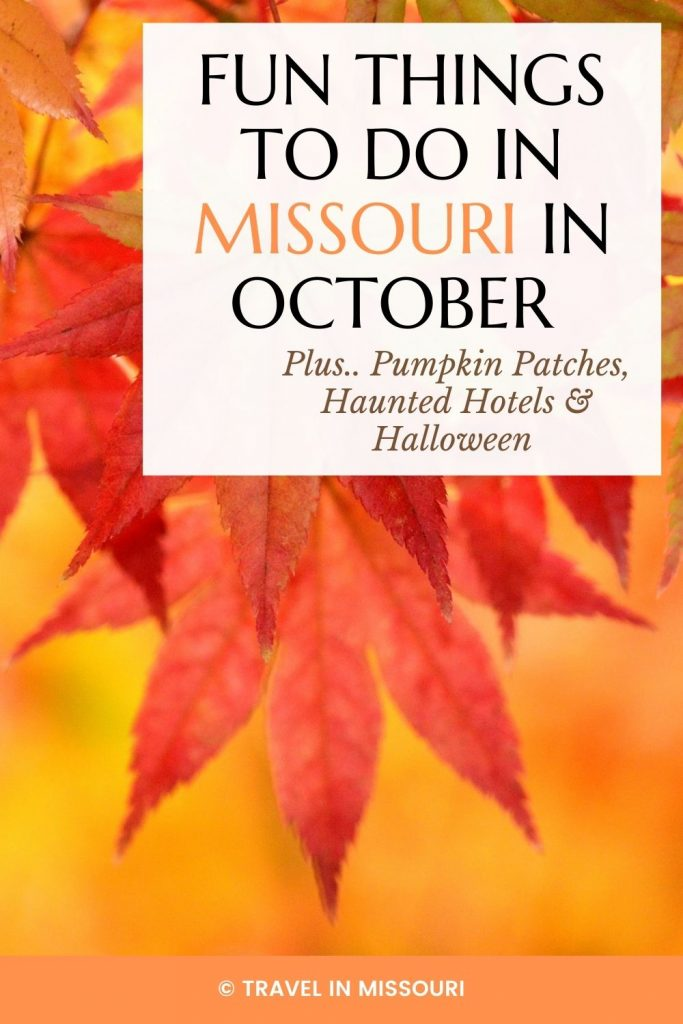 12 best festivals and events in Missouri in October. We've also included our favorite pumpkin patches, haunted hotels and haunted places in Missouri. The is the best list of what to do in Missouri in October!